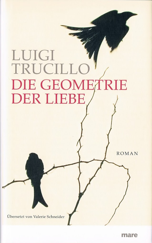 Debütroman von Luigi Trucillo